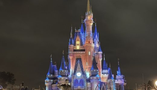 【WDW2019】Magic Kingdom 圧巻のショーHappily Every After!