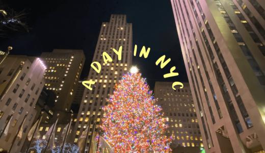 【NEW YORK 2019】ニューヨークをお金を使わないで楽しむ1日観光プランを紹介!