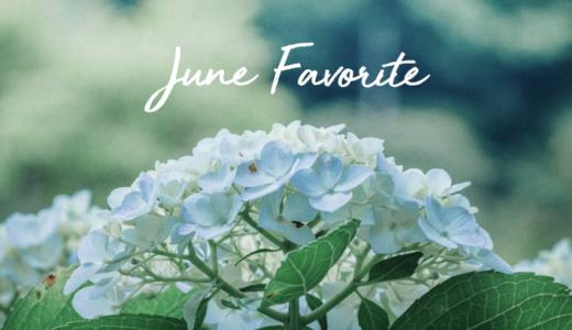 6月のお気に入り|トートバッグ、本、虹プロ